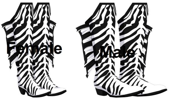 Zealous Zebra Boots